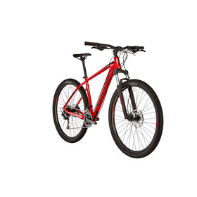 "ORBEA MX 40 29"" MTB Hardtail red"